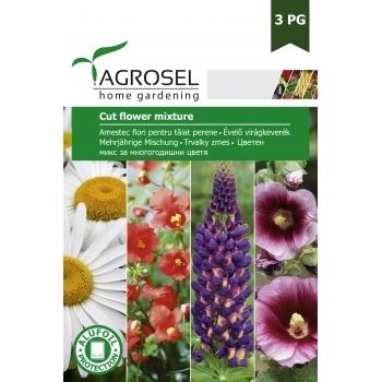 Seminte Amestec flori pentru taiat,  perene,  (4 gr), Agrosel