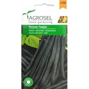 Seminte Fasole mov Purple Teepee (20 gr), Agrosel