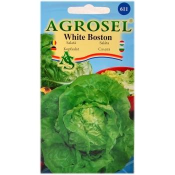 Seminte salata White Boston(4 gr) Agrosel