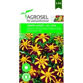 Seminte Craite bicolor pitic (1gr), Agrosel