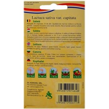 Seminte salata Great Lakes 118(3 gr) Agrosel, 2PG #2