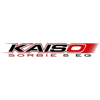 Insecticid Kaiso Sorbe  (300 gr), Nufarm