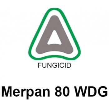 Fungicid Merpan 80WDG (5kg), Adama