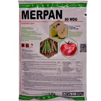 Fungicid Merpan 80 WDG(1 kg) Adama