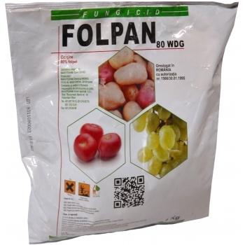 Fungicid Folpan 80 WDG(1 kg) Adama