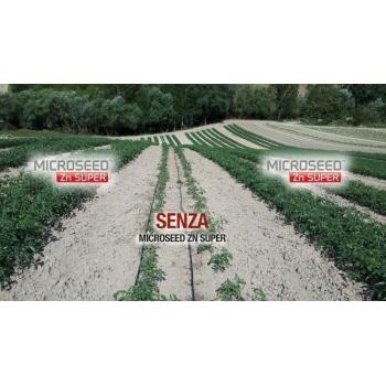 Ingrasamant Microseed ZN Super, microgranulat cu aplicare la sol, 10kg, EuroTSA #2