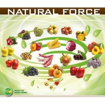 Ingrasamant Natural Force Fertilizer lichid cu aplicare foliara si fertirigare,1 kg, EuroTSA #4