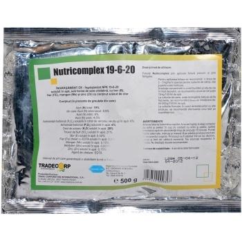 Ingrasamant fertirigare Nutricomplex 19-6-20(500 gr) Chemark