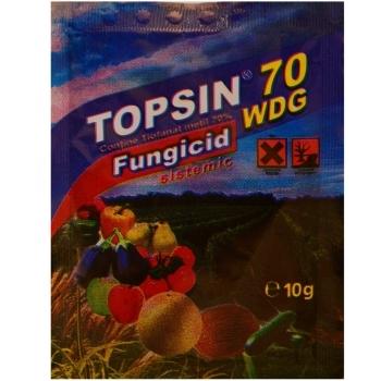Fungicid Topsin 70 WDG(10 gr) Adama