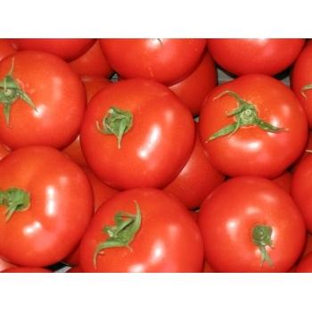 Seminte tomate Kecskeméti Jubileum, 1000 seminte