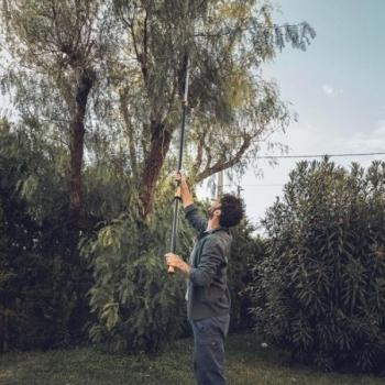 FOARFECA FISKARS UNIVERSALA TELESCOPICA PENTRU GRADINA UPX86 #6