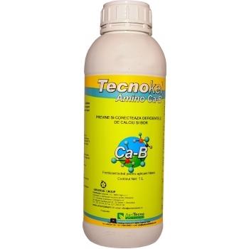 Ingrasamant lichid, cu aport suplimentar de calciu si bor, cu aplicare foliara si fertirigare,  Tecnokel Amino Ca-B, 1L,  AgriTecno