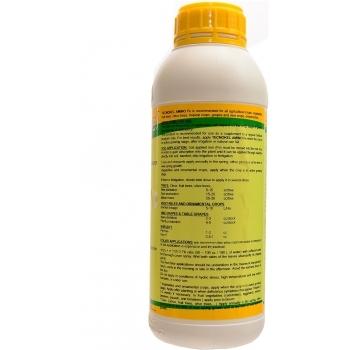 Ingrasamant lichid Bio, cu aplicare foliara si la sol, cu aport suplimentar de fier (Fe),  Tecnokel Amino Fe, 1L,  AgriTecno #2