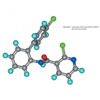 Fungicid Cantus® pentru vița de vie ( 1KG) #2