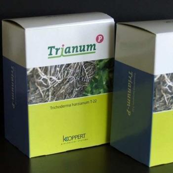 TRIANUM -P COMBATERE BOLI SI DAUNATORI 500 ML