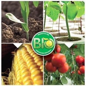 Ingrasamant Microseed Bio microgranulat cu aplicare la sol, 1kg, Eurotsa #2