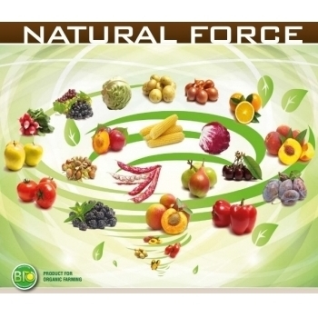 Ingrasamant Natural Force Fertilizer lichid cu aplicare foliara si fertirigare, 500g, EuroTSA #5