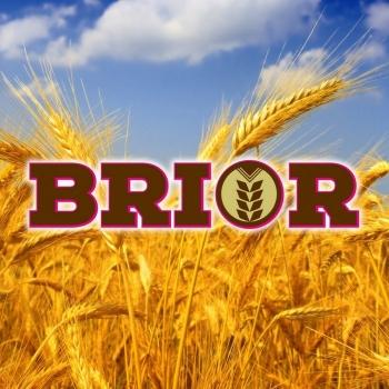 Complex organic BRIOR 1kg, EuroTsa #2