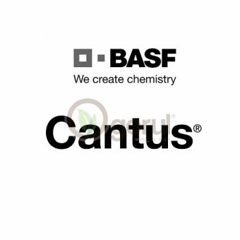 Fungicid Cantus® pentru vița de vie ( 100gr)