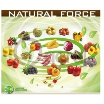 Ingrasamant Natural Force Fertilizer lichid cu aplicare foliara si fertirigare, EuroTSA