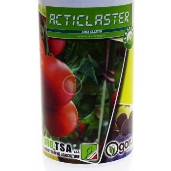 Ingrasamant Acticlaster, lichid cu aplicare foliara si fertirigare, EuroTSA #2