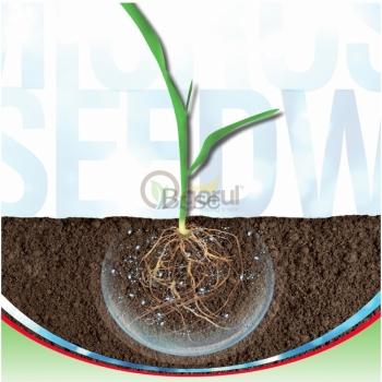 Ingrasamant Microseed WR, microgranulat cu aplicare la sol, EuroTSA